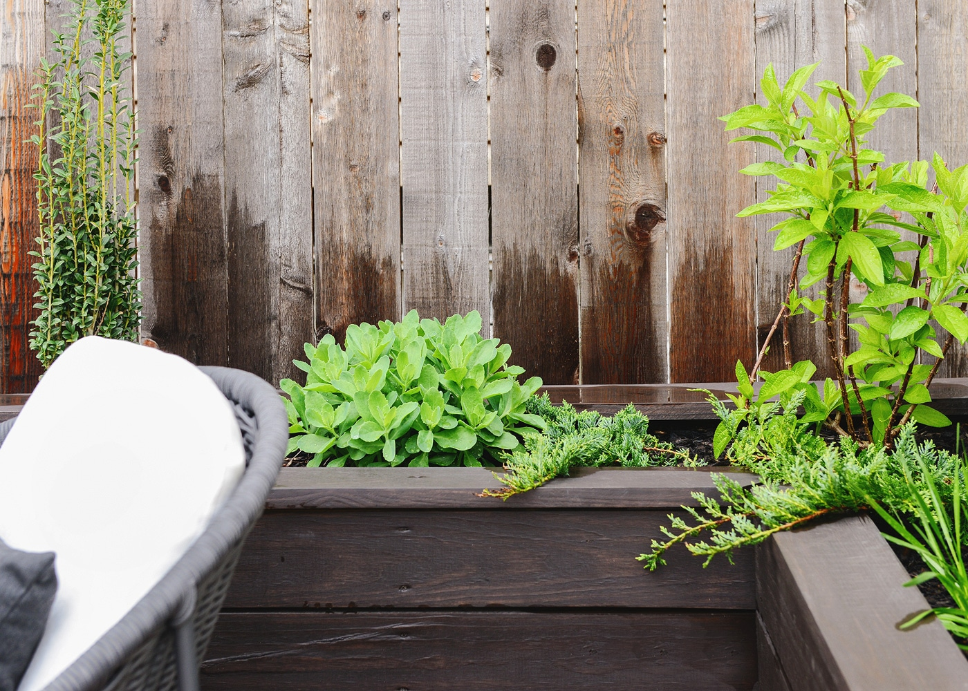 Our Planter Boxes After A Chicago Winter Yellow Brick Home