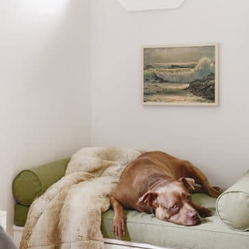 Window seat bench with storage (makes a great elevated dog bed!) | via Yellow Brick Home