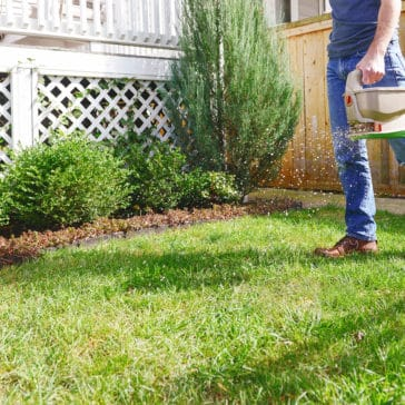 How to prepare your lawn for winter | via Yellow Brick Home